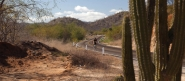 Mexico, Baja California - bike touring
