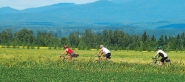 Mauricie - bike touring